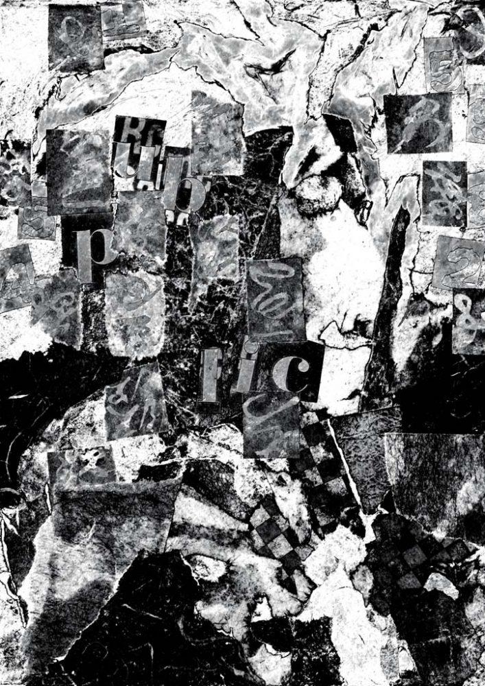 Diane Lafontaine   Fossilisation des fragments